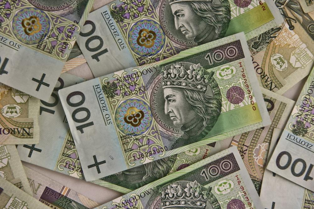 Przedsiębiorcy już mogą ubiegać się o dotację do 5 tys. zł z tzw. tarczy branżowej