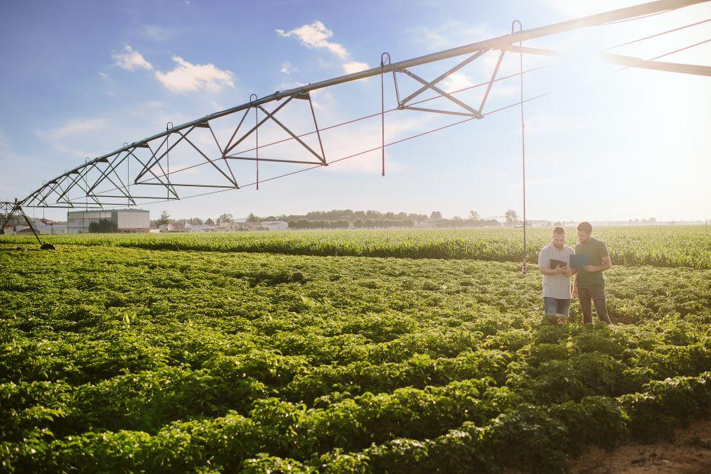 Rolnictwo regeneracyjne odpowiedzią PepsiCo na aktualne zagrożenia dla światowego systemu żywnościowego