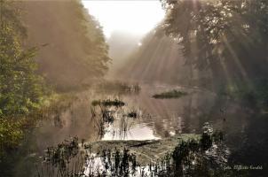 Najpiękniejsze zakątki powiatu drawskiego - konkurs fotograficzny rozstrzygnięty