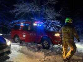 Służby ratunkowe w akcji poszukiwania starszej kobiety